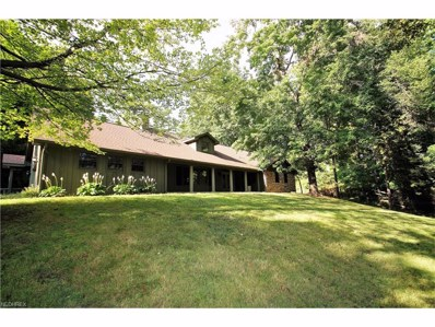 461 Etter Rd, Suffield, OH 44260 - MLS#: 3884212