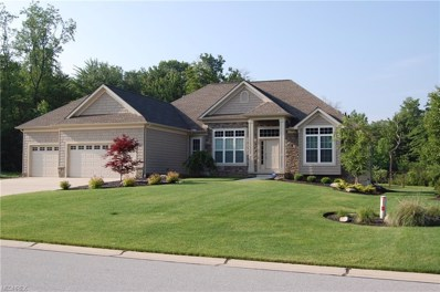 7978 Still Water Ct, Concord, OH 44077 - MLS#: 3887504
