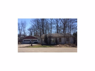 315 Redfern Rd, Chippewa Lake, OH 44215 - MLS#: 3888604