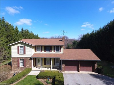 15336 Strader Rd, East Liverpool, OH 43920 - MLS#: 3889723