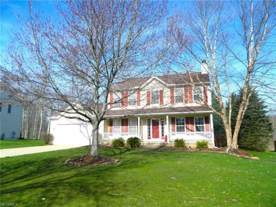 10226 Andover Dr, Twinsburg, OH 44087 - MLS#: 3891906