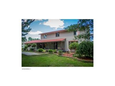 2575 Granger Rd, Medina, OH 44256 - MLS#: 3892185