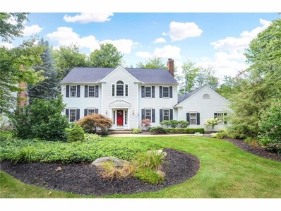 101 Foxhall Dr, Chagrin Falls, OH 44022 - MLS#: 3899372
