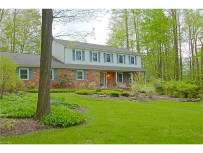 17365 Wood Acre Trl, Chagrin Falls, OH 44023 - MLS#: 3899785