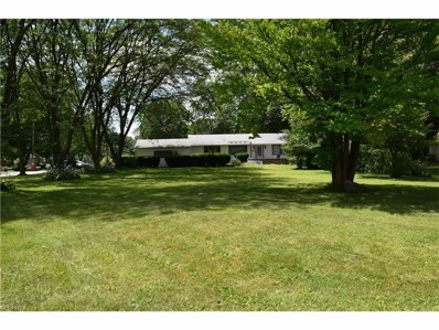 700 North Rd SOUTHEAST, Warren, OH 44484 - MLS#: 3900103