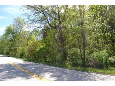 Schady, Olmsted Township, OH 44138 - MLS#: 3900707