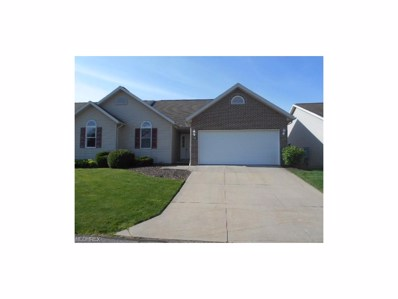 1166 Wild Brook Dr, Akron, OH 44313 - MLS#: 3900759
