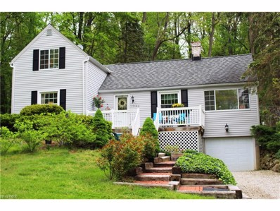 17123 Overlook Dr, Chagrin Falls, OH 44023 - MLS#: 3901109