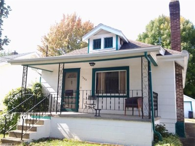 1230 Lily St, Akron, OH 44301 - MLS#: 3901506