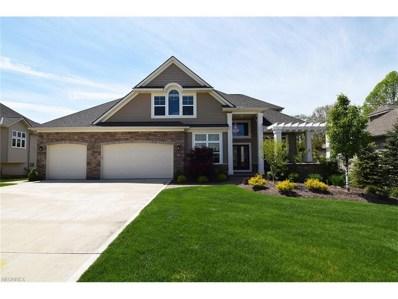 446 Saint Andrews Ln, Broadview Heights, OH 44147 - MLS#: 3902412