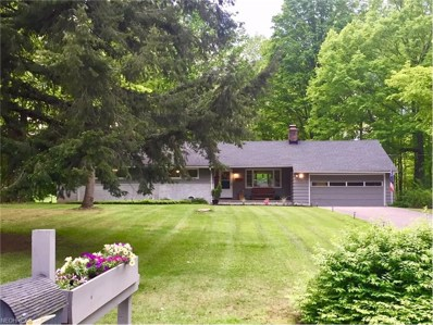 115 Leaview Ln, Chagrin Falls, OH 44022 - MLS#: 3903287
