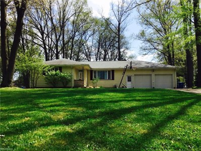 431 Catherine, Youngstown, OH 44505 - MLS#: 3903498