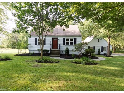 1156 Bell Rd, Chagrin Falls, OH 44022 - MLS#: 3904513