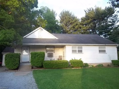115 Mill St, Leetonia, OH 44431 - MLS#: 3906805