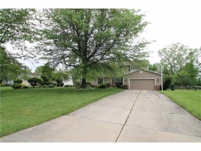29699 Orangewood Dr, Orange, OH 44122 - MLS#: 3907641
