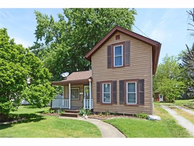1004 Chestnut St, Grafton, OH 44044 - MLS#: 3907909