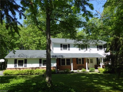 12050 Sperry Rd, Chesterland, OH 44026 - MLS#: 3908632