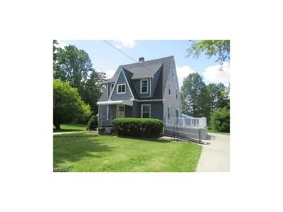 10826 Main St, New Middletown, OH 44442 - MLS#: 3909130