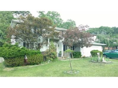 6793 Cheryl Ann Dr, Seven Hills, OH 44131 - MLS#: 3910527