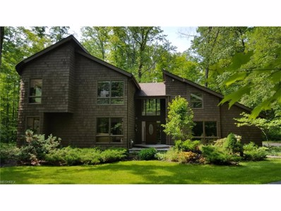 17138 Wood Acre Trl, Chagrin Falls, OH 44023 - MLS#: 3910679