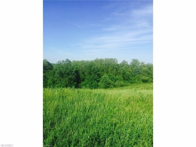 State Route 555, Chesterhill, OH 43728 - MLS#: 3910813