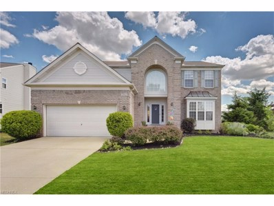 3861 Silsby Ct, Avon, OH 44011 - MLS#: 3911130