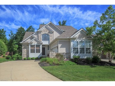 11488 Turnstone Ln, Concord, OH 44077 - MLS#: 3911406