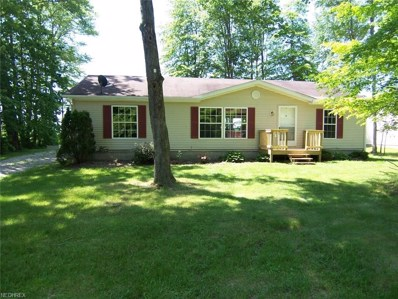 888 Long Shadow Ln, Roaming Shores, OH 44085 - MLS#: 3911551