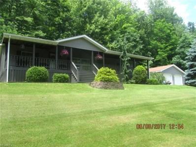 17641 Buzzard Rd, Wellsville, OH 43968 - MLS#: 3911897