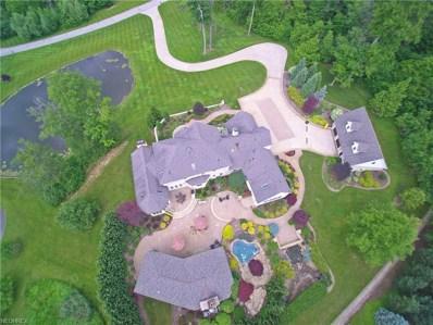 12450 Falcon Ridge Rd, Chesterland, OH 44026 - MLS#: 3911986