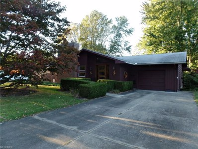 1456 E 11th, Salem, OH 44460 - MLS#: 3912991