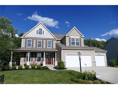 4284 Brownstone Ln, Medina, OH 44256 - MLS#: 3912999