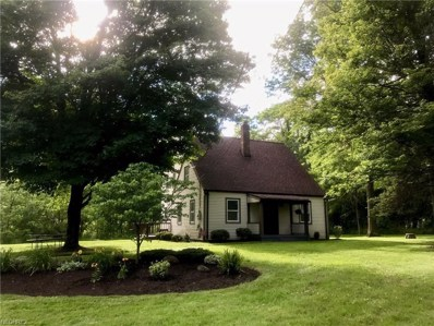 478 Youngstown Kingsville Rd SOUTHEAST, Vienna, OH 44473 - MLS#: 3913374