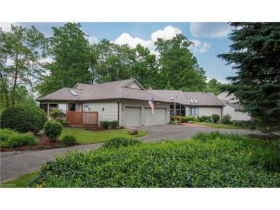 441 Long Dr, Chagrin Falls, OH 44023 - MLS#: 3913463
