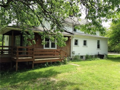 6919 Wadsworth Rd, Medina, OH 44256 - MLS#: 3914174