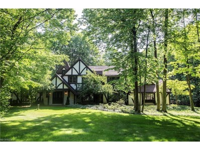 18941 Rivers Edge Dr WEST, Chagrin Falls, OH 44023 - MLS#: 3914670