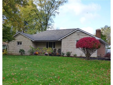 2520 5th Ave, Liberty, OH 44505 - MLS#: 3914788