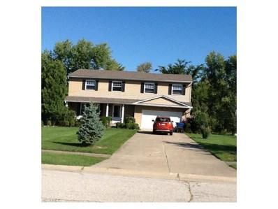 1013 Hampton Dr, Macedonia, OH 44056 - MLS#: 3915203