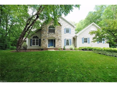 8698 Chase Dr, Chagrin Falls, OH 44023 - MLS#: 3915818