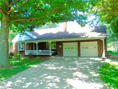 53 Clouse Ave, Akron, OH 44333 - MLS#: 3915984