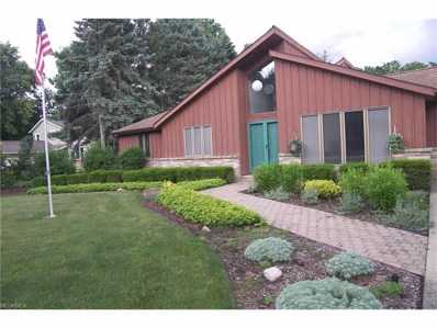 2494 Palmer Dr, Willoughby Hills, OH 44094 - MLS#: 3916095