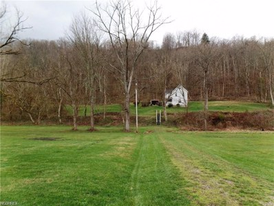 4795 N State Route 669 NORTHWEST, McConnelsville, OH 43756 - MLS#: 3916558