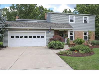 311 Shadydale Dr, Canfield, OH 44406 - MLS#: 3916804