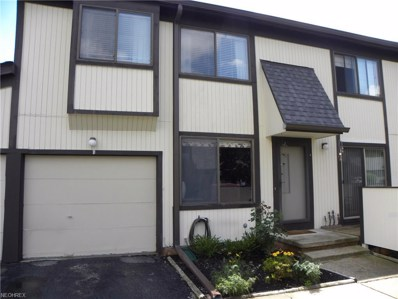 35228 N Turtle Trl UNIT 41-B, Willoughby, OH 44094 - MLS#: 3917161