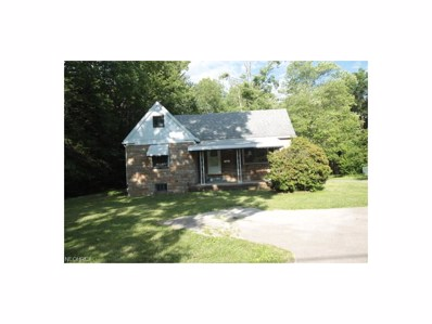 311 S Belle Vista Ave, Youngstown, OH 44509 - MLS#: 3917221