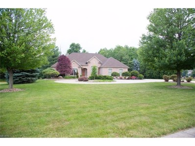 3645 Villa Rosa Dr, Canfield, OH 44406 - MLS#: 3917224