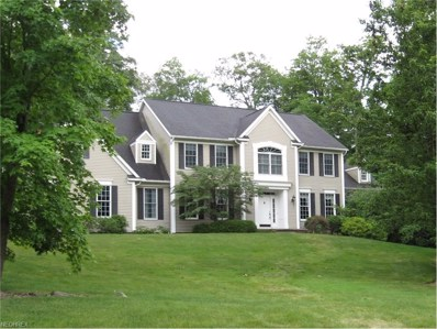 4532 Forest Brooke Ct NORTH, Richfield, OH 44286 - MLS#: 3917499