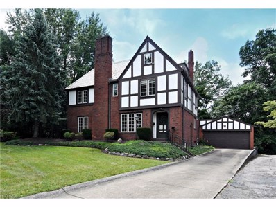 214 Storer Ave, Akron, OH 44302 - MLS#: 3917740