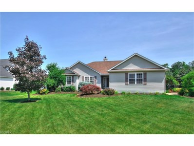 3351 Pine Hollow Pl, Perry, OH 44081 - MLS#: 3917800