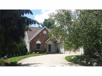 224 Lake Pointe Dr, Akron, OH 44333 - MLS#: 3918122